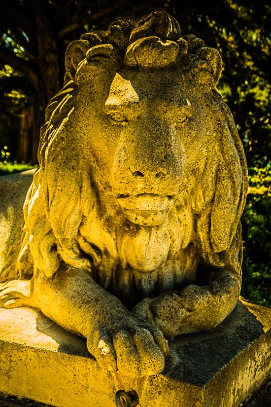 Lion Guarding Sutro Gardens